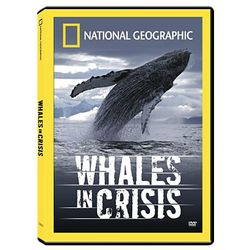 Whales in Crisis DVD