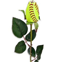 Softball Rose