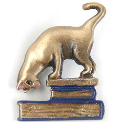 Brass Cat on Books Brooch