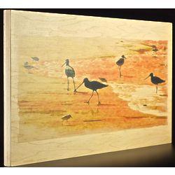 Sandpipers Wood Print