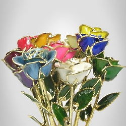 "Super Special Dozen 11"" Multi-Color Preserved Rose Bouquet"