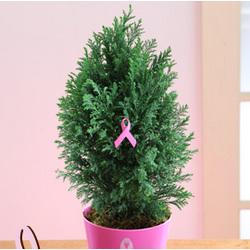 Pink Ribbon Honor Tree
