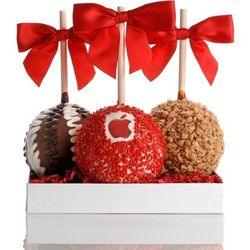 Logo Gourmet Chocolate Caramel Apples