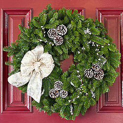 Winter Elegance 24 Inch Wreath