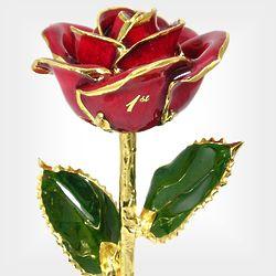 """11"""" Anniversary Red Rose"""