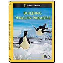 Building Penguin Paradise DVD-R