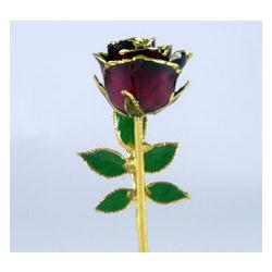 """5"""" Burgundy Promise Rose"""