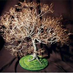 Dogwood on Lawn Wire Bonsai Tree Sculpture