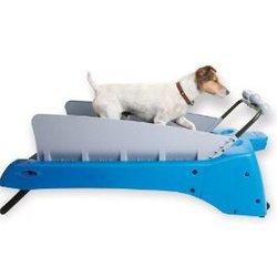 DogTread Motorized Exercise Treadmill
