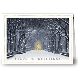 Beauty in the Park Holiday Greeting Card