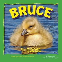 Bruce the Goose Book
