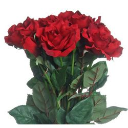 Just Silk Roses - 12 Stems