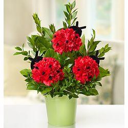 Love Bugs Bouquet