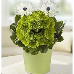 Froggy Flower Pail