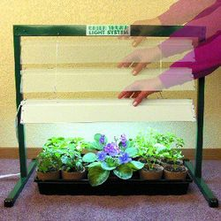 Green Thumb 2 Foot Grow Light System
