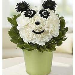 Panda Flower Pail