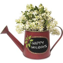 Star of Bethlehem Watering Can Planter with Chalkboard Panel