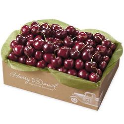 Fresh Bing Cherries