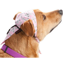 Pets Rock Pink Crosses Doo Rag