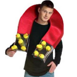 Adult Chick Magnet Costume