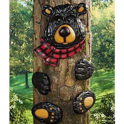 Black Bear Tree Hugger
