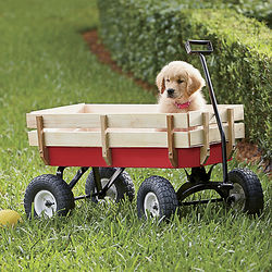 All-Terrain Garden Wagon