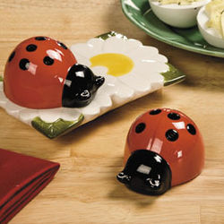 Ladybug Salt and Pepper Shakers Set