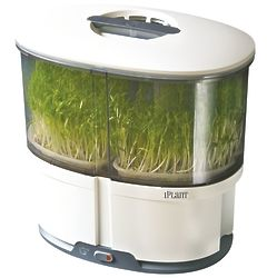 iPlant Sprout Garden with Starter Seeds in White