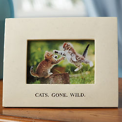 Cats Gone Wild Picture Frame