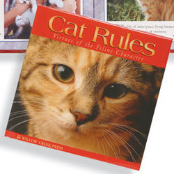 Cat Rules: Virtues of the Feline Character Book