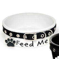 Collared Feed Me Dog Dish