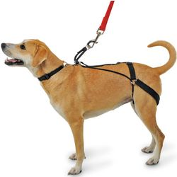 Canine's Tug Preventing Harness