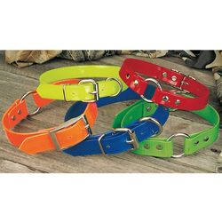 Day-Glo Dog Collars