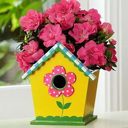 Birdhouse Azalea Garden