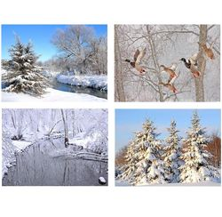 8 Photo Note Cards of Wisconsin Winter
