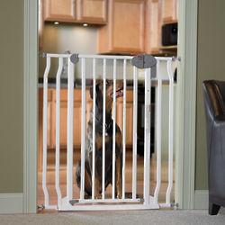 Great Dane Steel Pet Gate