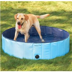 Canine Splash Pool