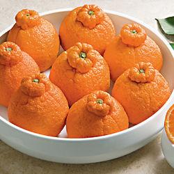 Sumo Citrus Gift Box