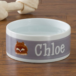 Dog Breeds Personalized Small Dog Food Bowl