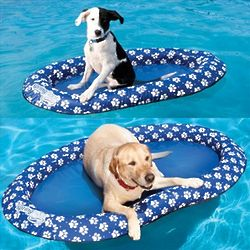 Small Pet Spring Lounge Float