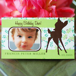 Personalized Photo Birthday Party Save the Date Magnet
