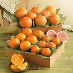 Triple Decker Small Family Size Fruit Basket