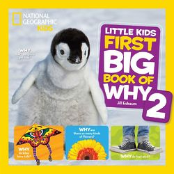 Little Kid's First Big Book of Why 2