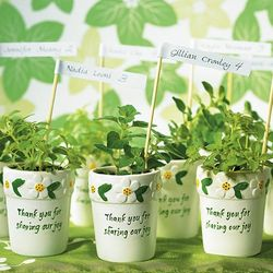 Miniature Flower Pots Favors