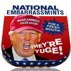 Donald Trump National Embarrassmints