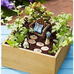 Miniature Indoor Garden