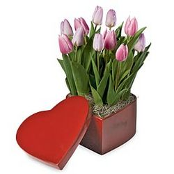 Pink Tulips in Heart-Shaped Box