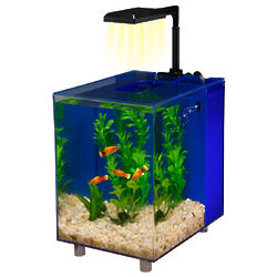 Blue 2 Gallon Prism Nano Aquarium Kit
