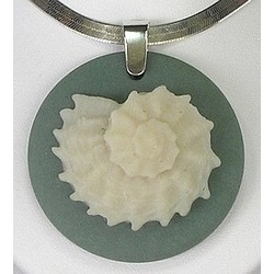 Star Shell Pendant in Fossil Coral with Sterling Silver Chain