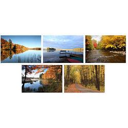 Autumn Landscapes Photo Note Cards